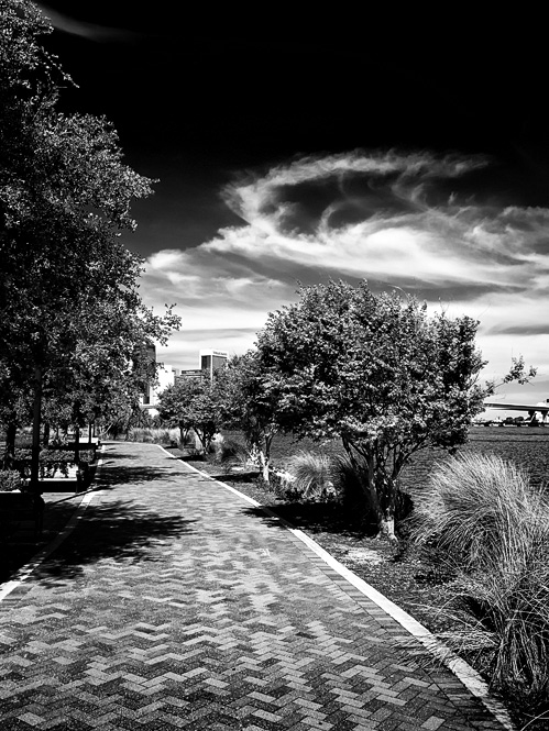 Riverside, Jacksonville, Florida. ©Calvin Palmer 2013. All Rights Reserved.