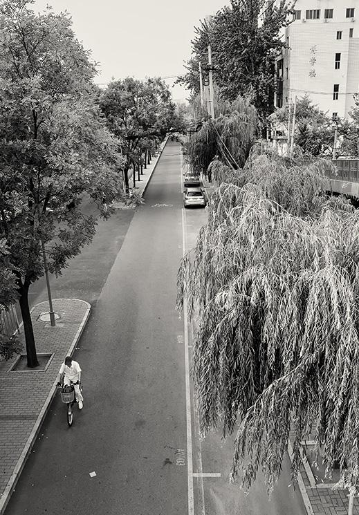 Man cylces along the cycle lane adjoining Huixin E Street, Chaoyang, Beijing, China.